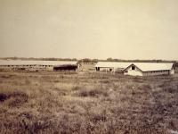 Horse & Mule Barns August 1915 (92).jpg