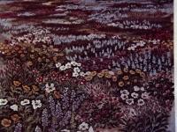 Field of Flowers painting from Nausmans American Wildflowers (332).jpg